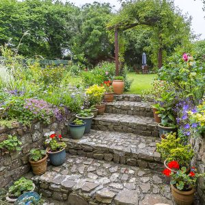 Garden at Meadowview Bed and Breakfast Bude